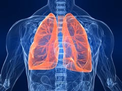 web Lungs image
